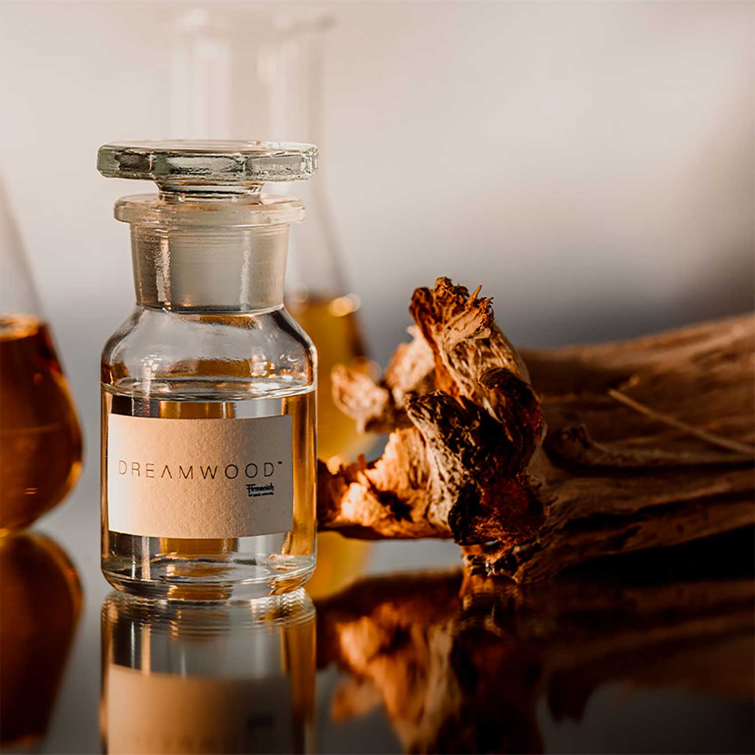 Dreamwood – the woody scent that dreams are made of