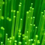 Green Motion Mane